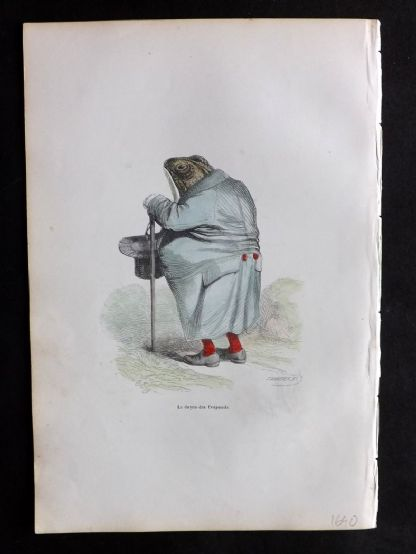 Grandville 1842 Hand Col Print. The Fat Frog